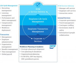 SAP ERP HCM graphic