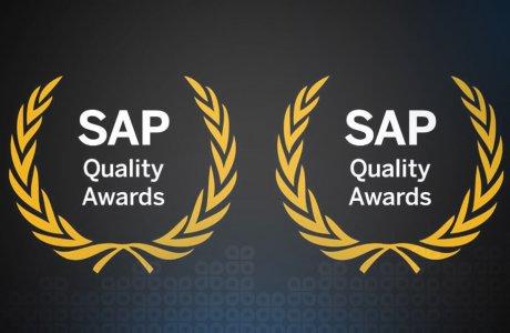Gavdi wins SAP Quality Awards